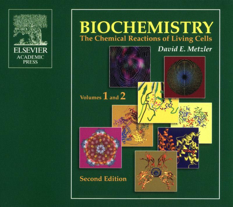Biochemistry berg 7th edition solutions manual